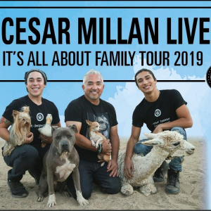 Cesar Millan 2019 © Show Factory, Peter Jacob