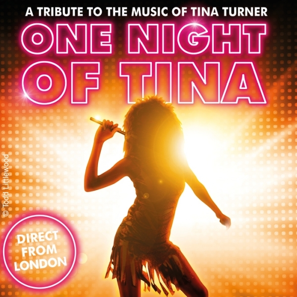One Night of Tina © Show Factory Entertainment GmbH
